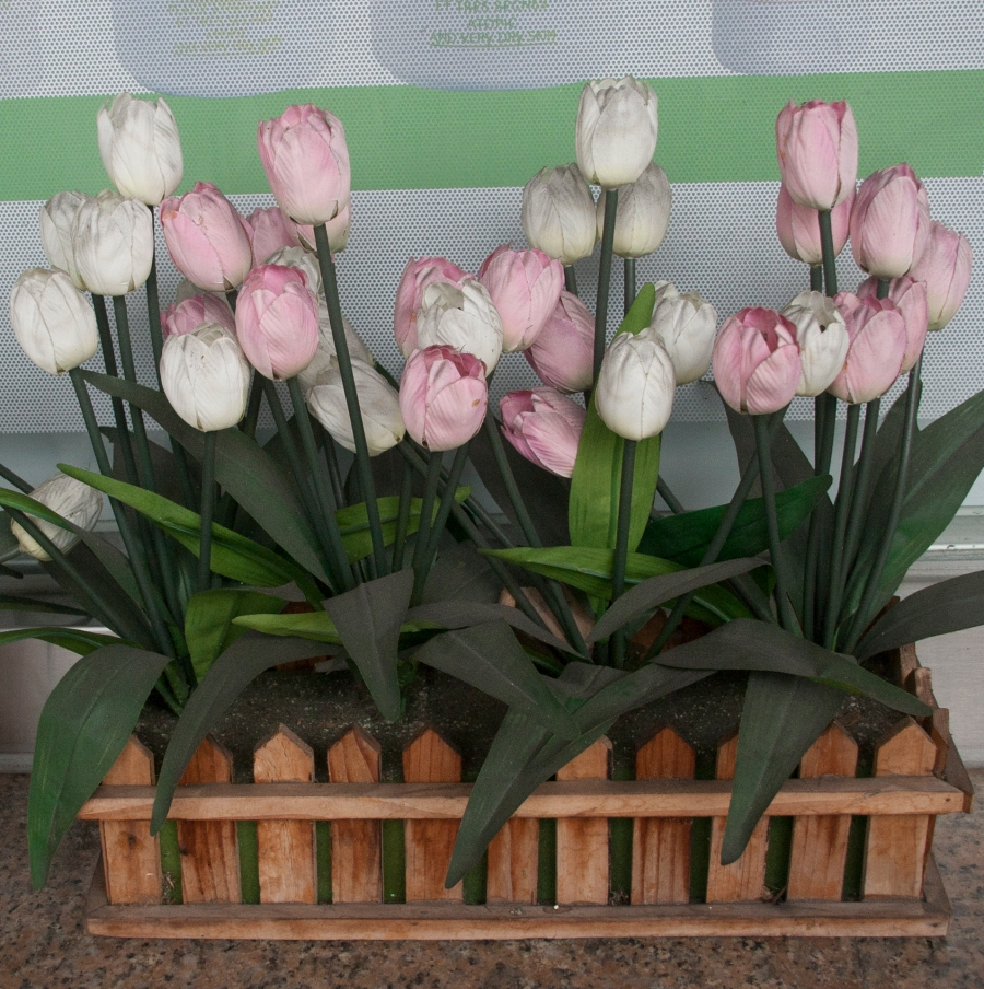Dirty Fake Tulips