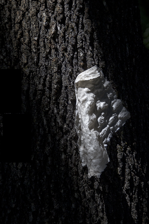 Handmade Paper on a Tree