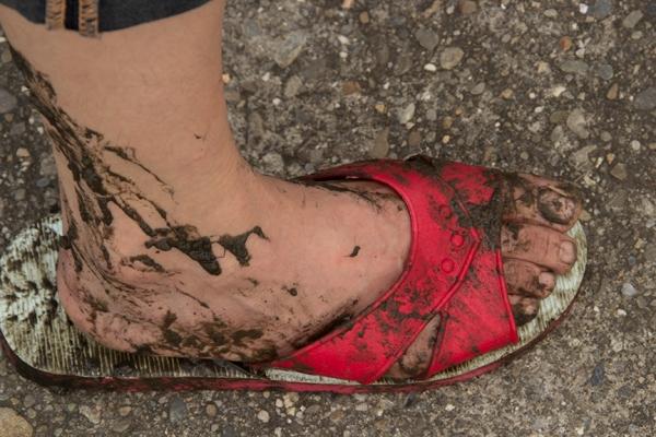 Wetlands Mud