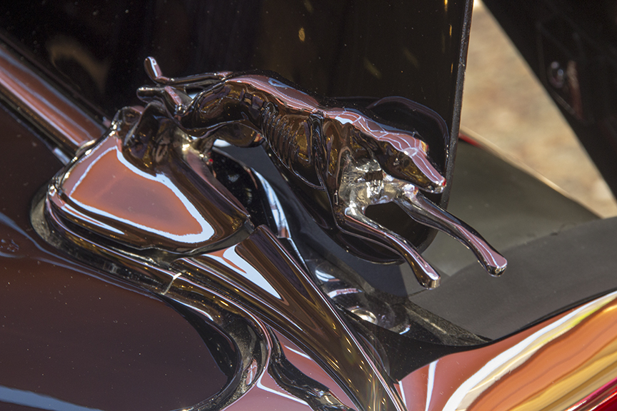Lincoln Greyhound Silver