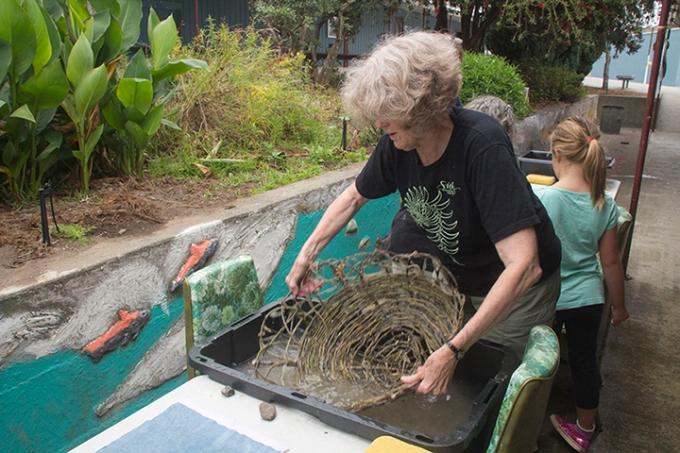 Jane Ingram Allen Dipping Her Nest into Paper Pulp