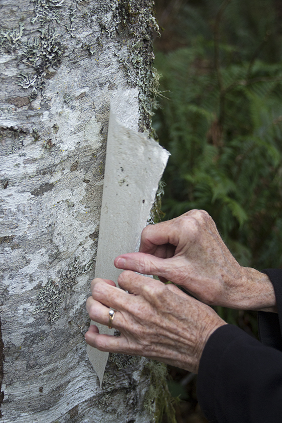 Jane removing dried paper