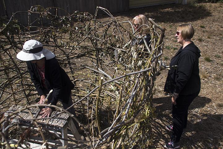 Volunteers Help Build the Large Nest