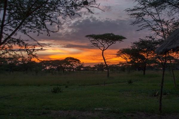 sunset on Serengeti-blog