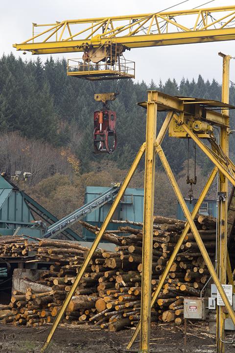 timber operation-blog