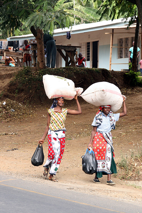 Women Carrying Sacks on Their Heads
