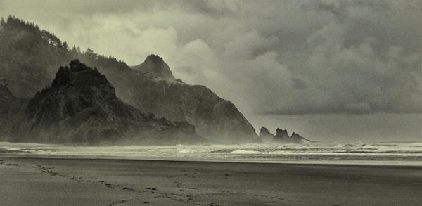 Rainy Oregon Coast