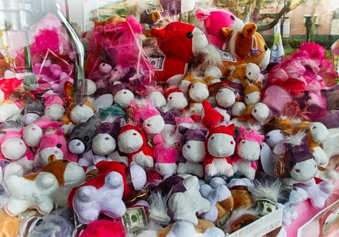 soft toys - Nan Hua Univ fair
