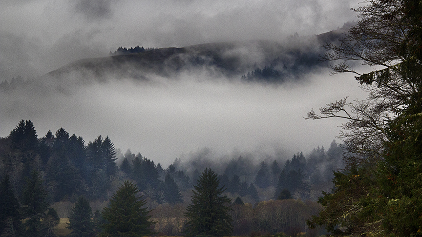Clouds Above the Salmon River Estuary, Sitka, Oregon