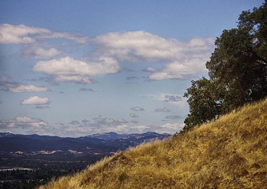 Sonoma Valley, Santa Rosa California