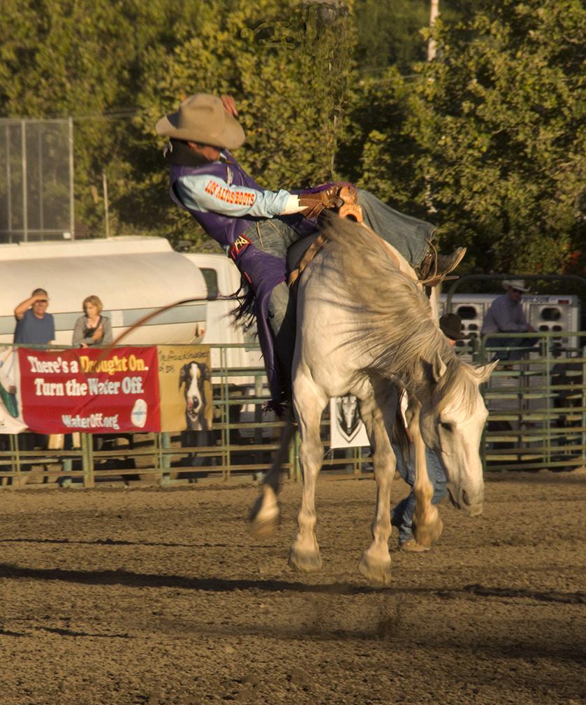 PRCA Rodeo, Sonoma County Fair, Santa Rosa, California, 2014