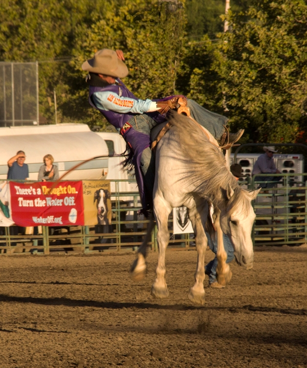 PRCA Rodeo, Sonoma County Fair, Santa Rosa, California, 2014