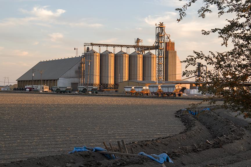 Sacramento Valley Grain Elevator at Sunset