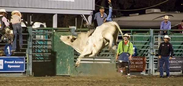 PRCA Rodeo, Sonoma County Fair, Santa Rosa, CA, 2014
