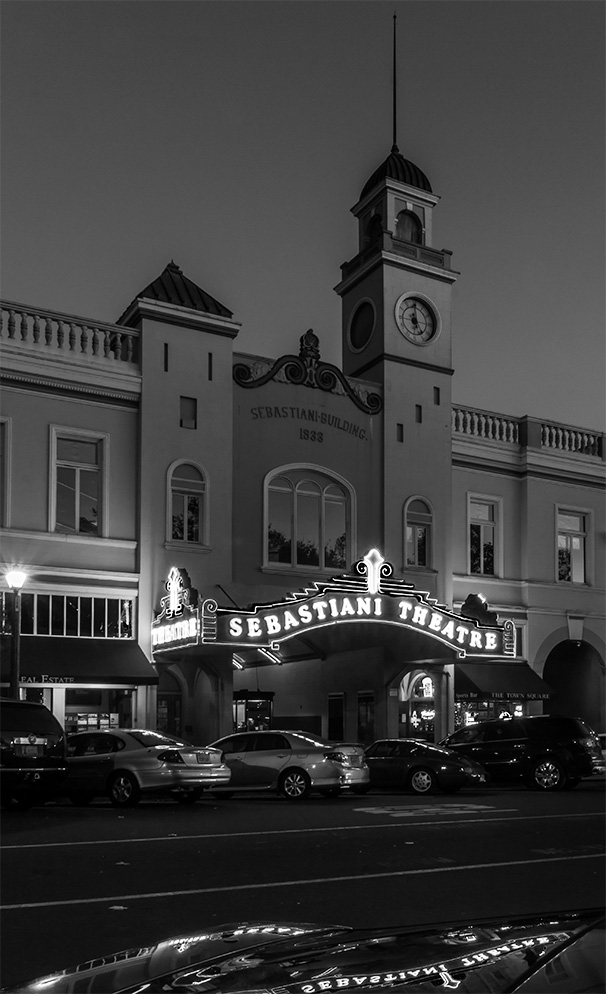 Sonoma, CA Monochrome Madness #39 http://leannecolephotography.com/2014/11/26/mm-39-monochrome-madness-39/