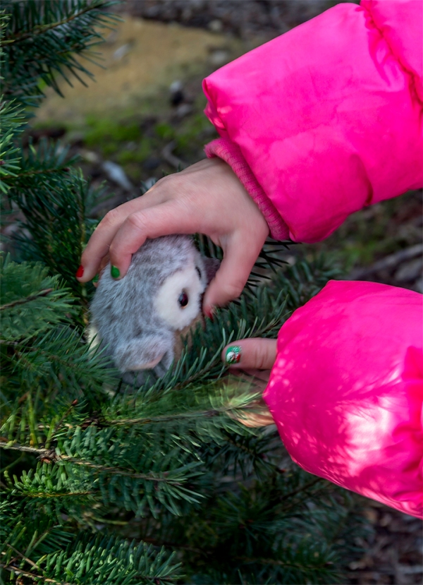 We were out selecting a Christmas tree from a local tree farm. My granddaughter Sarah brought her stuffed owl and was putting it in a small tree. She had had her nails painted with red and green colors and with a snowman on each thumbnail. Happy Holiday to everyone.