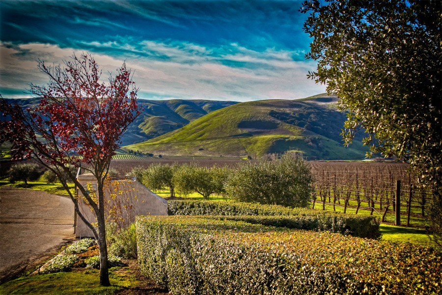 HDR - Sonoma County - California