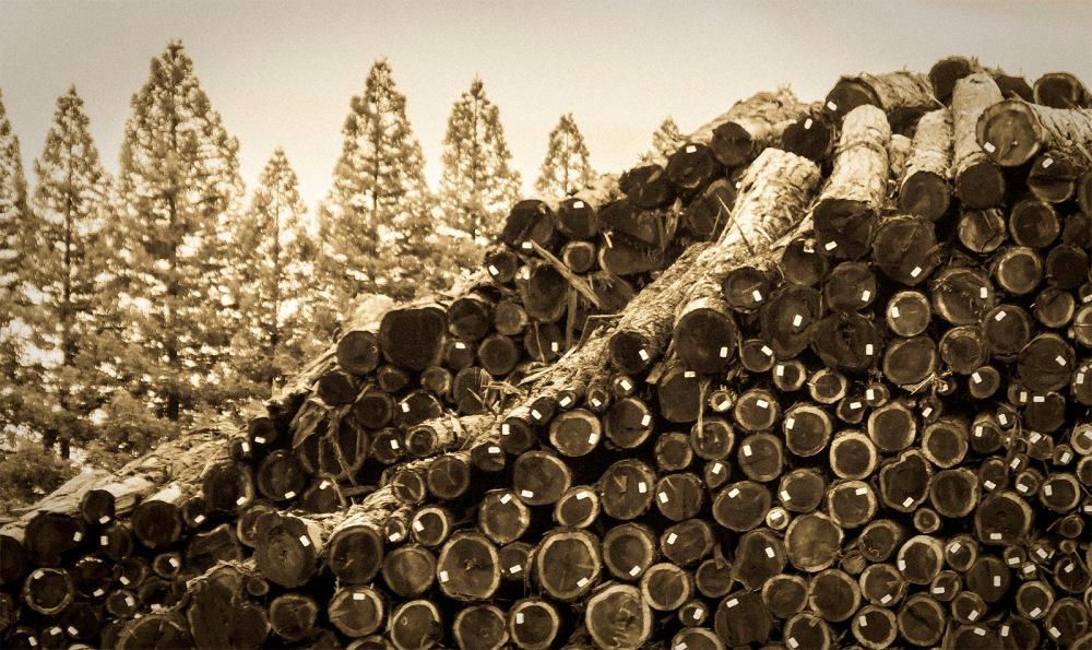 wk-3 logs
