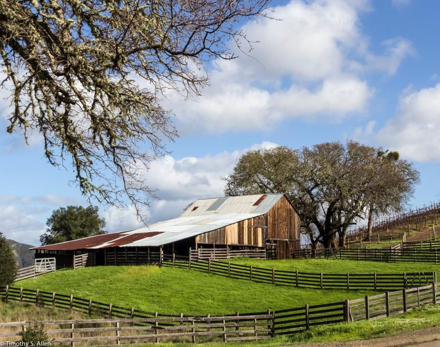Westphall Ridge Vineyards, Rockpile Rd. Geyserville, CA, February 2015