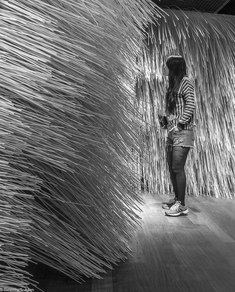 """Yu Wen-fu, """"Stingers"""", Bamboo Rods, From the solo exhibition """"Feather Dreams and Bamboo Quest"""" at the Museum of Contemporary Art, Taipei, Taiwan, March 28 to May 17, 2015."""