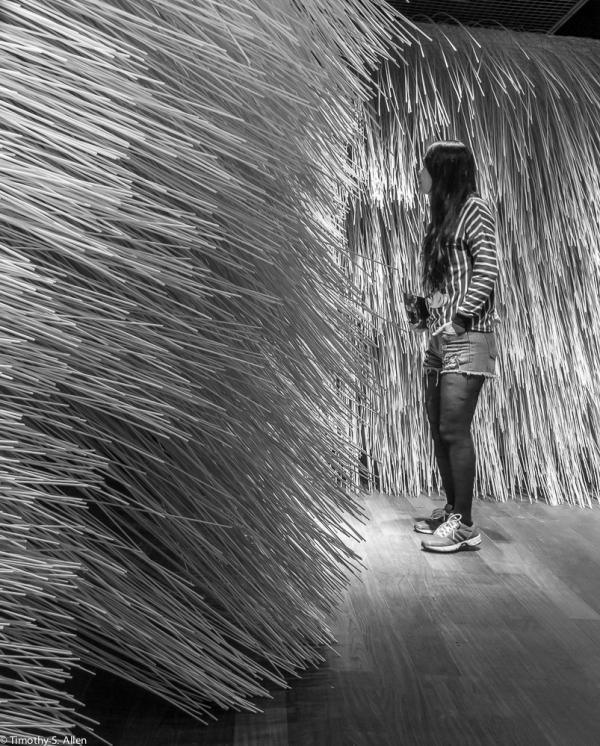"Yu Wen-fu, ""Stingers"", Bamboo Rods, From the solo exhibition ""Feather Dreams and Bamboo Quest"" at the Museum of Contemporary Art, Taipei, Taiwan, March 28 to May 17, 2015."