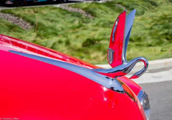 Packard Classic at Peggy Sue's Cruise, Rohnert Park, CA June 13, 2015