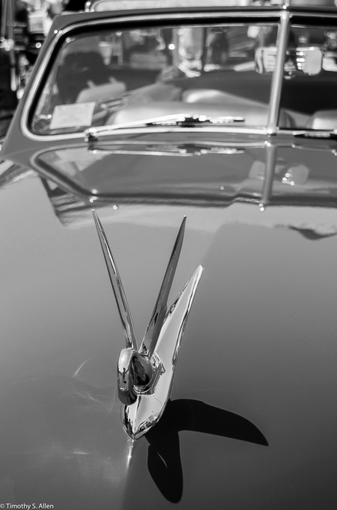 Packard Hood Ornament Peggy Sue's Cruise and Classic Car Show, Rohnert Park, California June 13, 2015 Also seen on Leanne Cole's Monochrome Madness 2-15 http://leannecolephotography.com