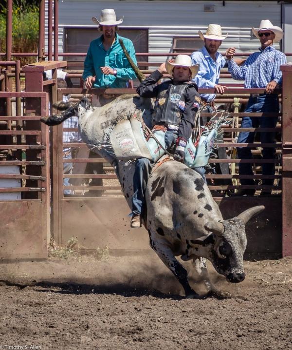 Russian River Rodeo and Parade Duncan Mills, California, USA June 28, 2015
