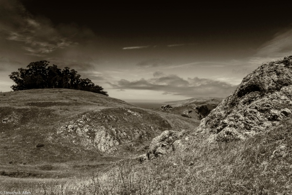 Coleman Valley Rd. Sonoma County, California, USA July 6, 2015