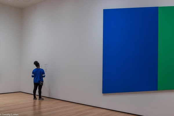 Ellsworth Kelly, Museum of Fine Arts, Boston, MA, USA August 26, 2015