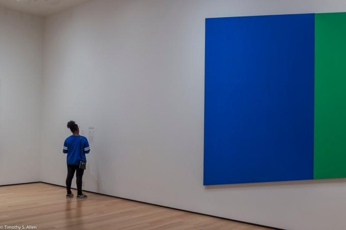 Ellsworth Kelly, Museum of Fine Arts, Boston, MA, USA August 26, 2015