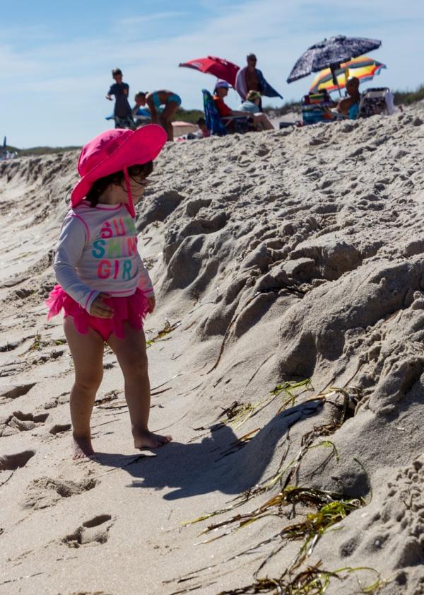 Beach at Watch Hill, Fire Island National Seashore, Fire Island, New York, U.S.A. September 6, 2015