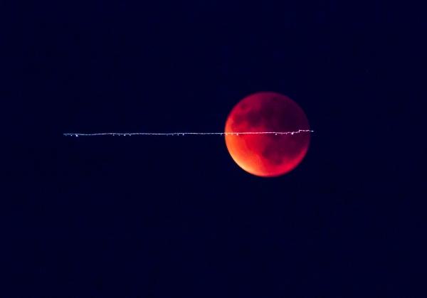 Eclipse of the Moon, Healdsburg, CA, USA September 27, 2015