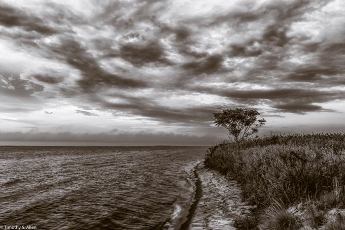 Fire Island National Seashore, Watch Hill, NY, USA September 9, 2015