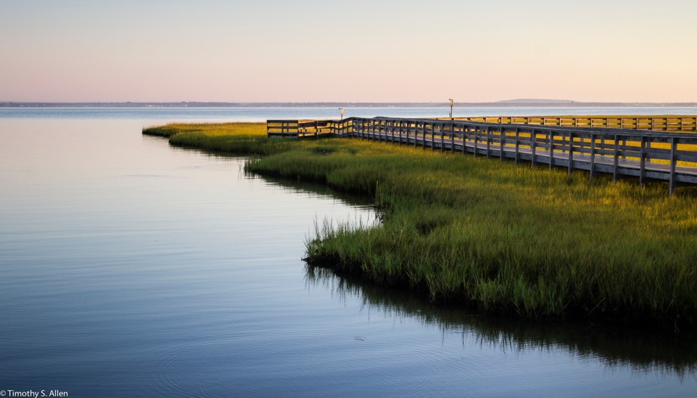 Salt Marsh, Watch Hill Visitors Center, Fire Island National Seashore, Fire Island, NY, U.S.A. September 18, 2015
