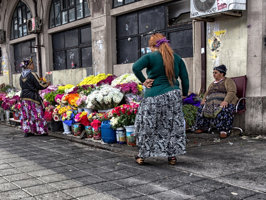Flower Sellers Bostanci Ferry Terminal Istanbul, Turkey November 23, 2015