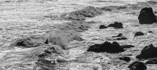 Pacific Ocean, Highway 1, Sonoma County, California, U.S.A. January 31, 2016
