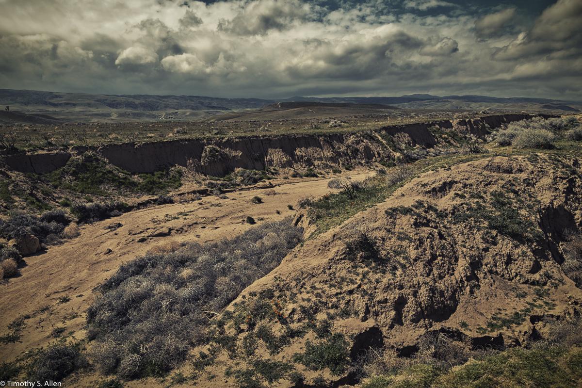 Desert arroyo
