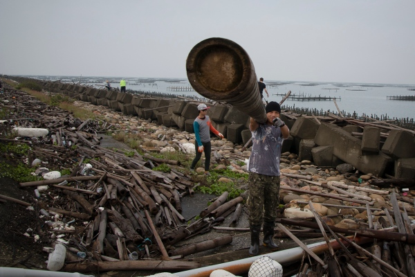 Chris Lee Collecting Recycled Bamboo from   Hsia Ruan Village Harbor for His Sculpture - Cheng-Long Wetlands International Environmental Art Project - https://artproject4wetland.wordpress.com - Cheng Long, Yunlin County - Chris's Blog Site is http://dandelionself.wix.com/chris  April 09, 2016