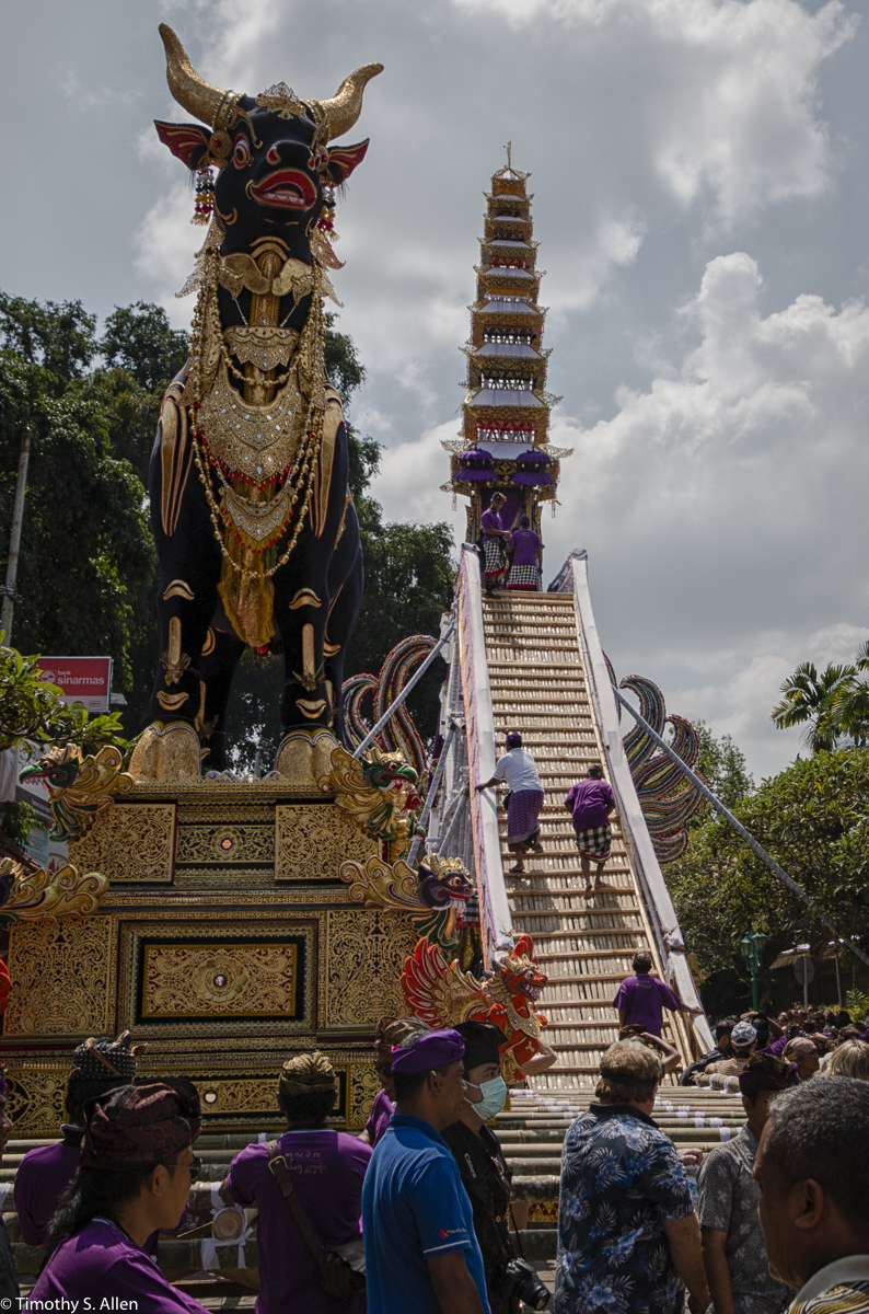 Cremation of the Ubud Bali Royal Family Member Cokorda Putra Widura. The base of the tower holds the coffined body as it and the bull are carried to the cemetery where the cremation takes place. The body Is placed atop of the bull and the bull is set afire. Ubud, Bali May 7, 2016