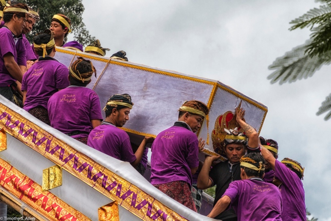 Cremation of the Ubud Bali Royal Family Member Cokorda Putra Widura. The coffin containing the purified body descends the stairs in the arms of the palace member. It will be carried to the waiting sarcophagus bull that has arrived before the cremation tower. Ubud, Bali - May 7, 2016