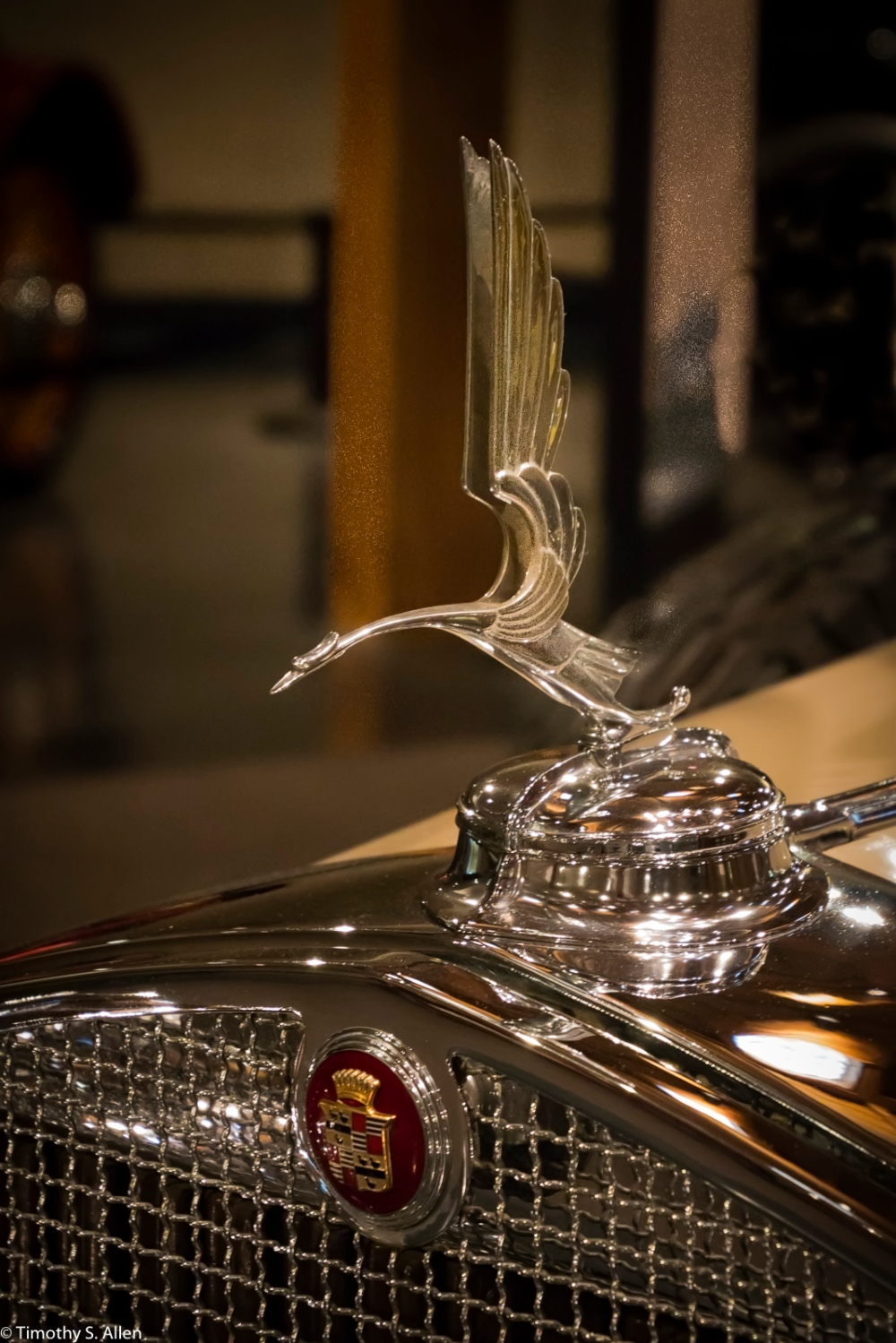 1930 Cadillac V-16 Convertible Coupe - Heritage Museums & Gardens Sandwich, MA August 29, 2016 http://heritagemuseumsandgardens.org/heritage-museums-classic-car-collection/1930-cadillac-v-16-convertible-coupe-2/