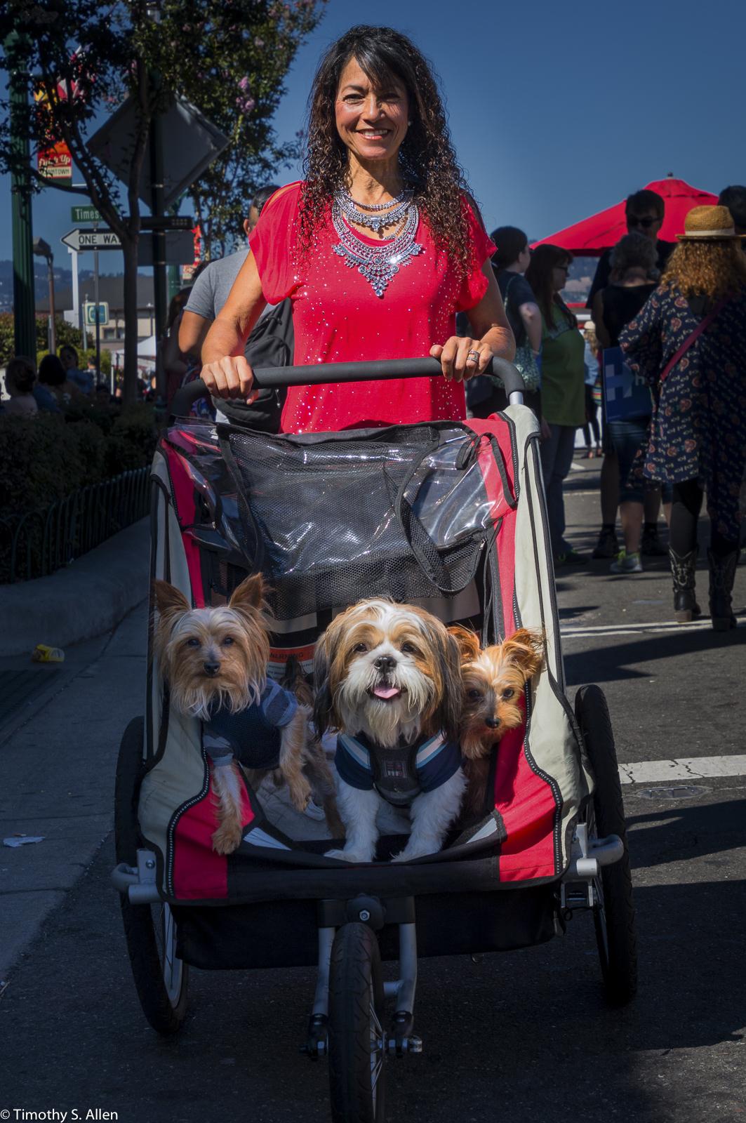 Alameda's Park Street Fair Alameda California, U.S.A. July 31, 2016