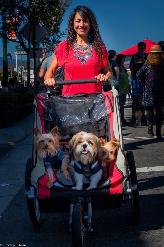 Alameda's Park Street Fair Alameda California, U.S.A. July 31, 2016