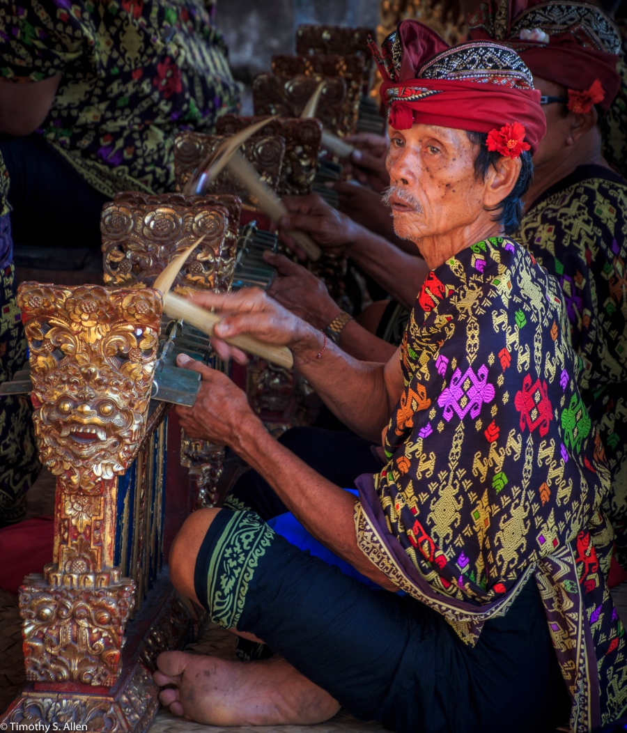 Memaksan Barong Denjalan, Barong, Bali, Indonesia May 7, 2016