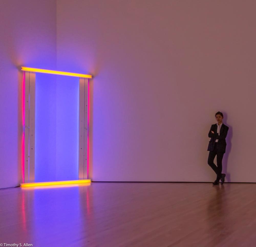 Dan Flavin, untitled (to Barnett Newman) two, 1971 San Francisco Museum of Modern Art San Francisco, CA, U.S.A. October 7, 2016