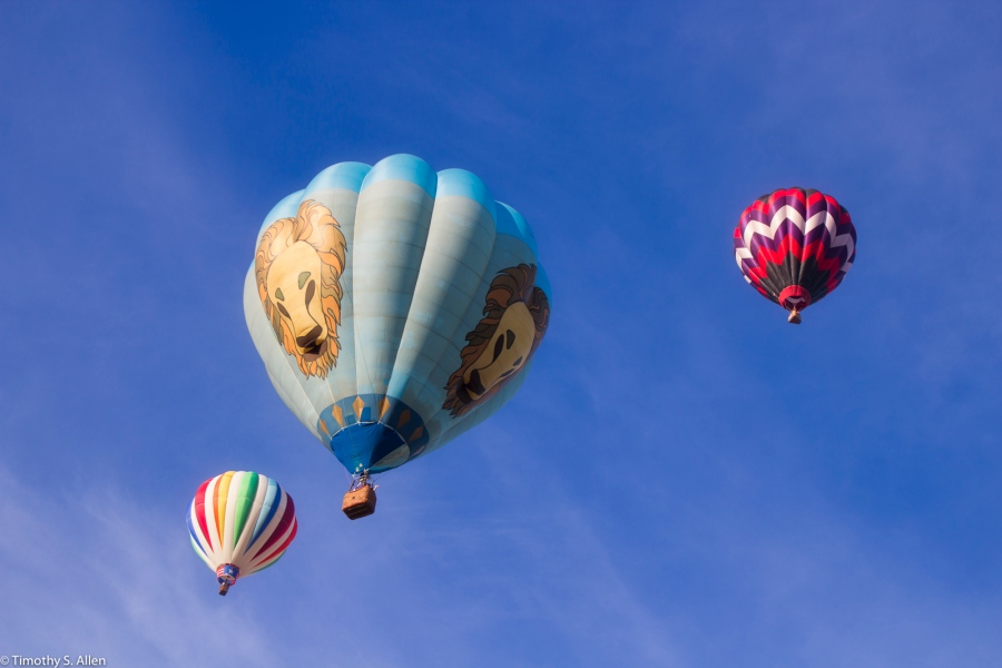 25th Sonoma County Hot Air Balloon Classic Windsor, California, USA June 30, 2015