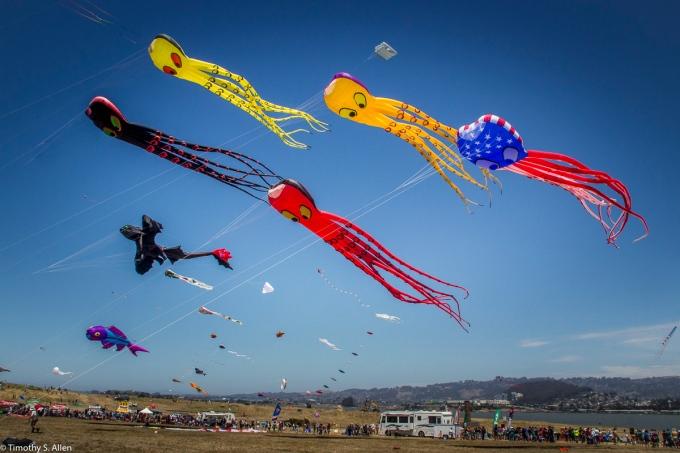 Berkeley Kite Festival Berkeley, CA, U.S.A. July 27, 2014
