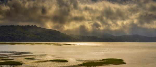 Marin County, CA, U.S.A. June 10, 2014