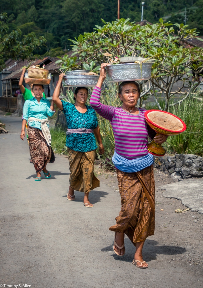 Balinese Women Bring Food for a Traditional Wedding Bali, Indonesia May 13, 2016